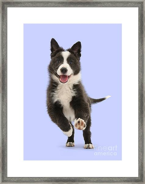 I Can Run All Day Framed Print