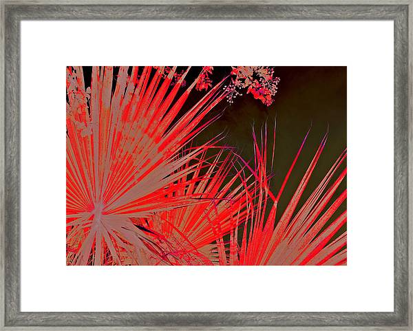 I Don't Want It To Be Day Or Night When I Think Of You - Famulagan 2015 Framed Print