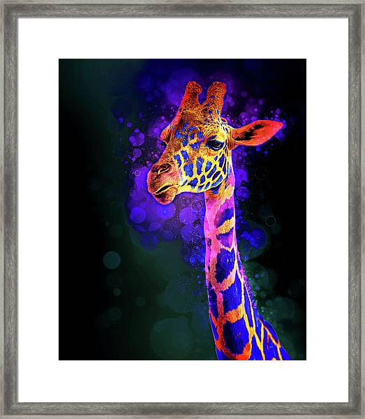 I Dreamt A Giraffe Framed Print