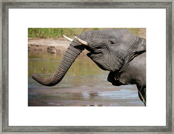 I Feel Happy Framed Print