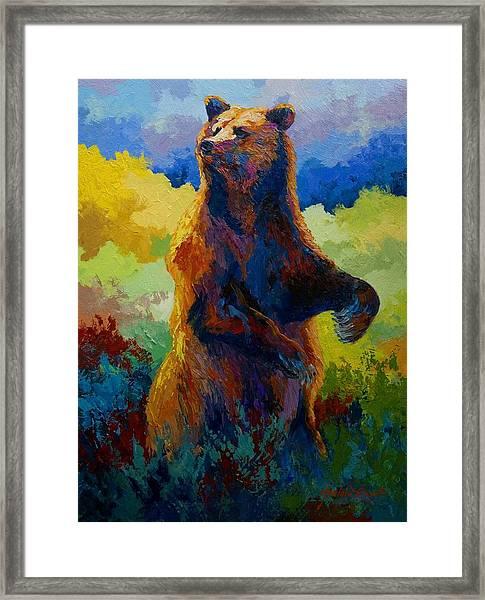 I Spy - Grizzly Bear Framed Print