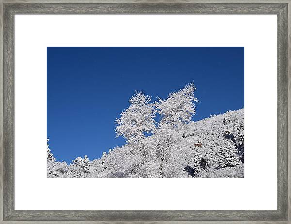 Ice Crystals Ute Pass Cos Co Framed Print