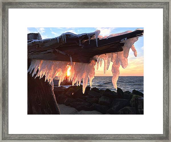 Ice Fangs Framed Print