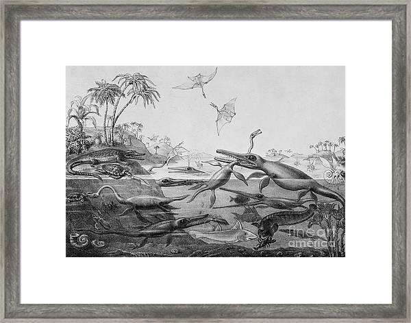 Ichthyosaurur, Plesiosaurus, Pterodactylus, Duria Antiquior  Framed Print