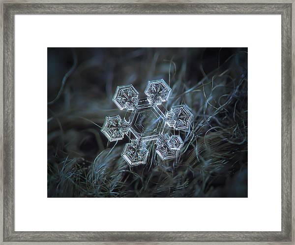 Icy Jewel Framed Print