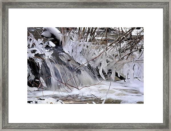 Icy Spring Framed Print