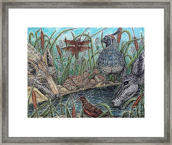 If They Can Share..? Framed Print