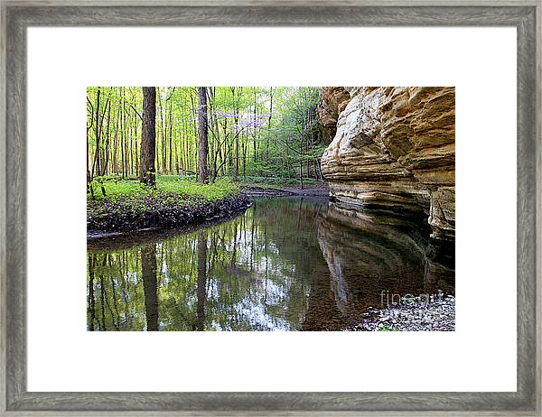 Illinois Canyon In Spring Starved Rock State Park Framed Print