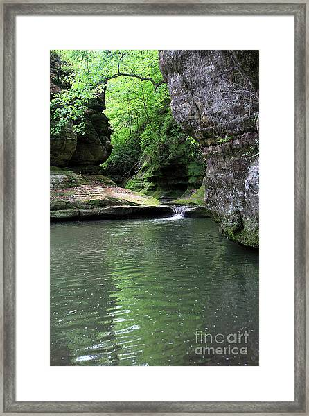 Illinois Canyon Summer Framed Print