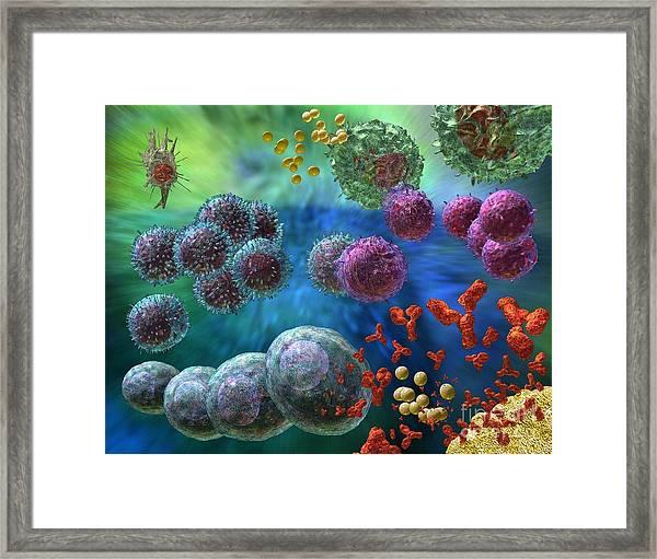 Immune Response Antibody 4 Framed Print