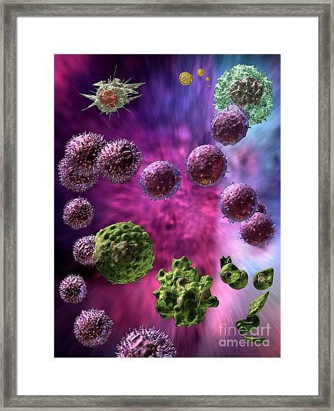 Immune Response Cytotoxic 4 Framed Print