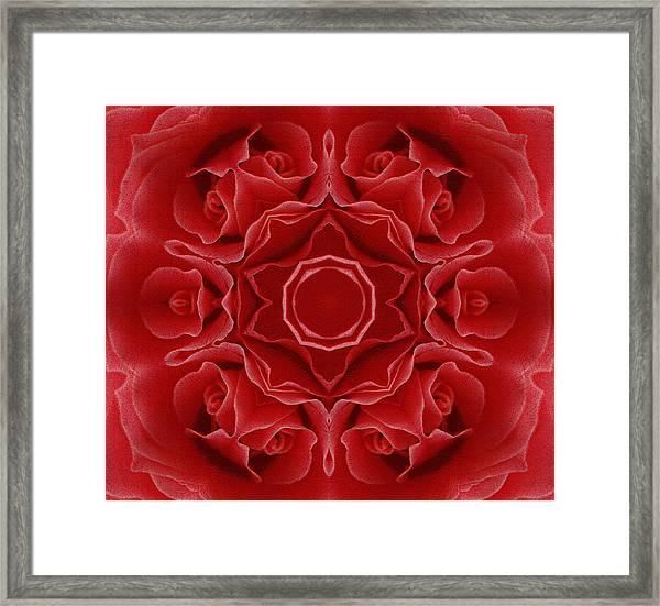 Imperial Red Rose Mandala Framed Print