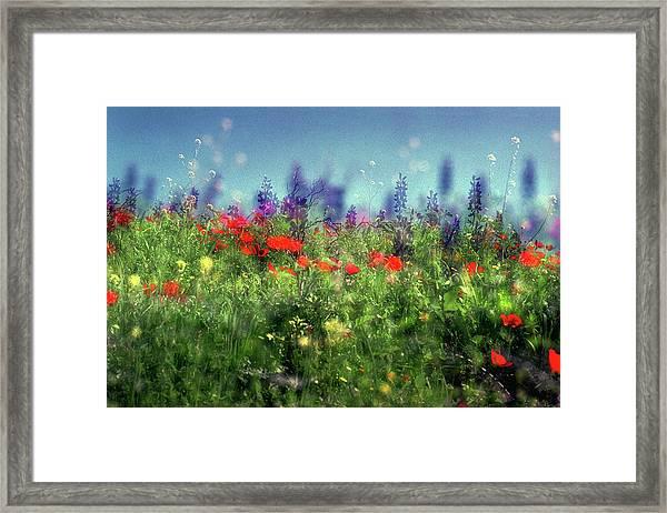 Impressionistic Springtime Framed Print