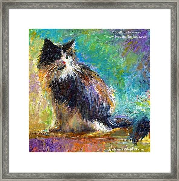Impressionistic Tuxedo Cat Painting By Framed Print