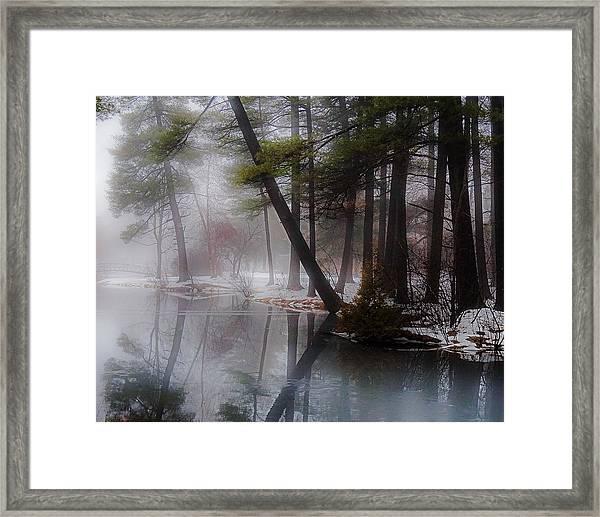 In A Fog Framed Print