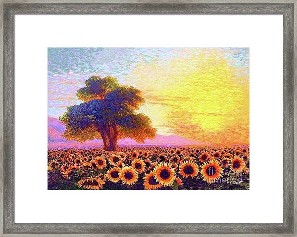 In Awe Of Sunflowers, Sunset Fields Framed Print