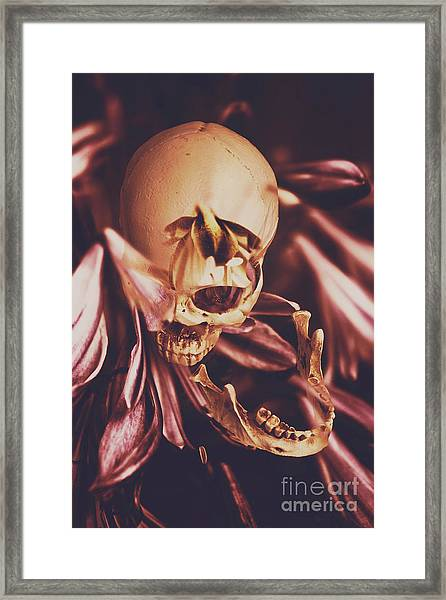 In Contrasts Of Soul Growth Framed Print