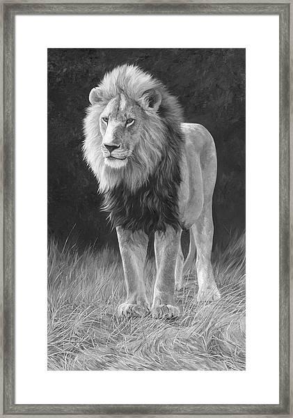 In His Prime - Black And White Framed Print