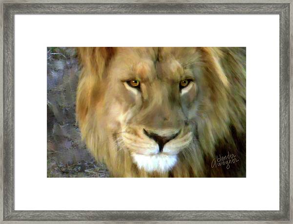 In His Sights Framed Print