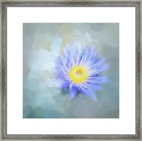 In My Dreams. Framed Print