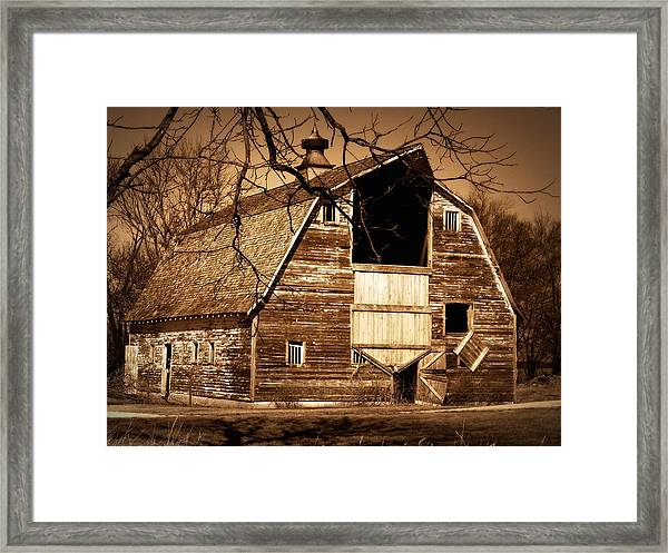 In Need Framed Print