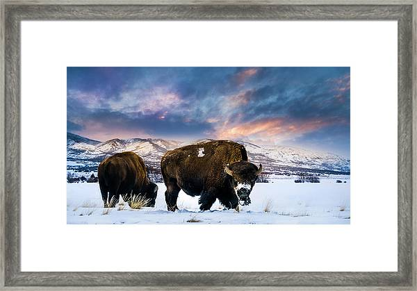 In The Grips Of Winter Framed Print