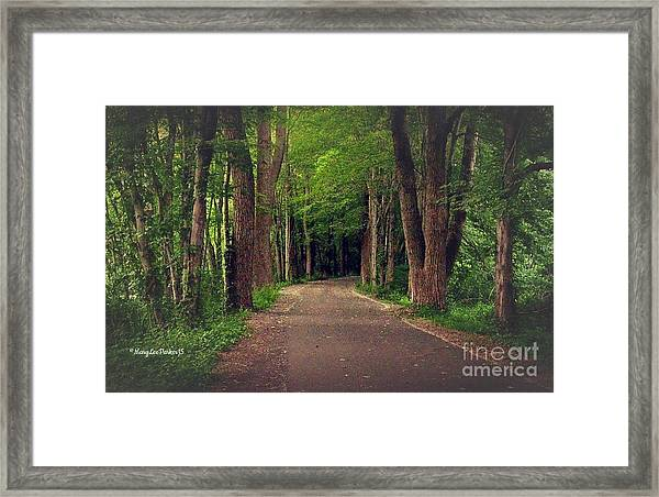 In To The   Deep Dark Woods  Framed Print