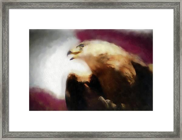 Independence Eagle Framed Print