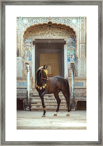 Indian Treasure Framed Print