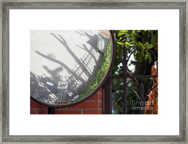 Indirect Nature Framed Print