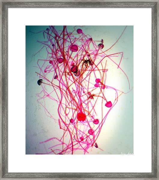 Infectious Ideas Framed Print