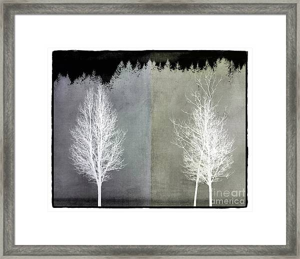 Infrared Trees With Texture Framed Print