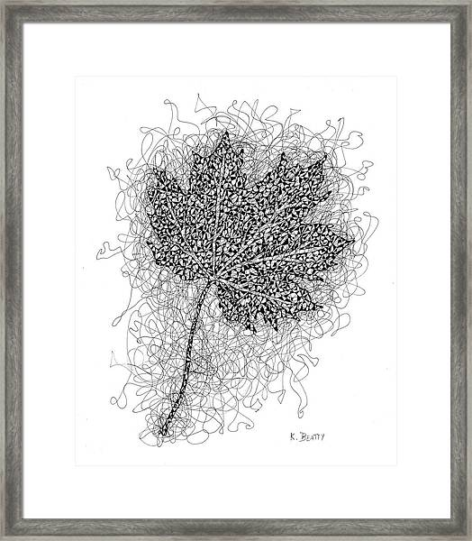 Ink Drawing Of Maple Leaf Framed Print