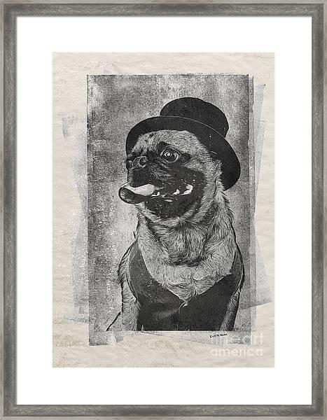 Inky Pug Framed Print