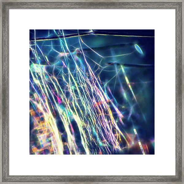 Inner Net II Framed Print