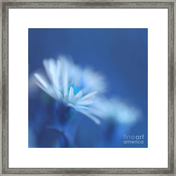 Innocence 11b Framed Print