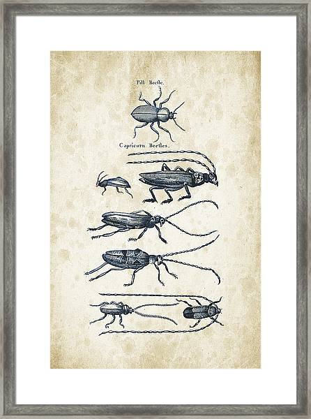 Insects - 1792 - 03 Framed Print
