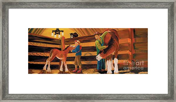 Inside The Barn Framed Print