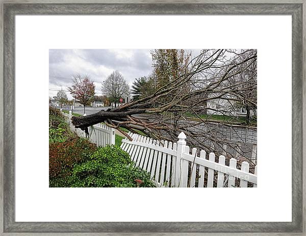 Insurance Claim Framed Print