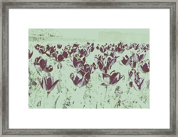 Interplay Framed Print