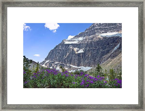 Interpretive Apps In The Canadian Rockies Framed Print