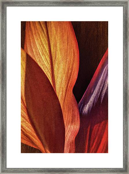 Interweaving Leaves I Framed Print
