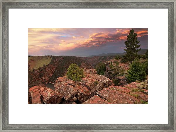 Into Red Canyon Framed Print by David Halter