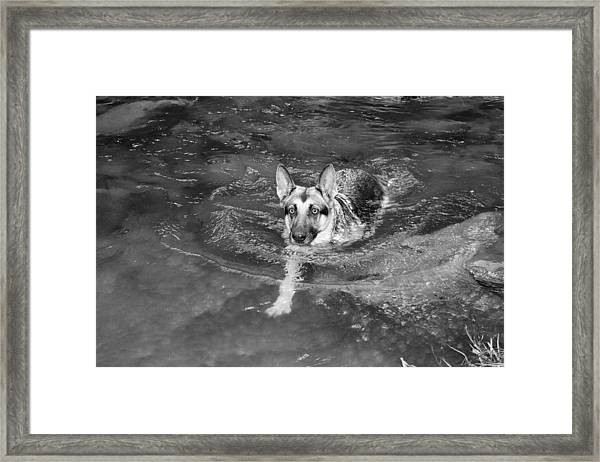 Into The Cold Framed Print