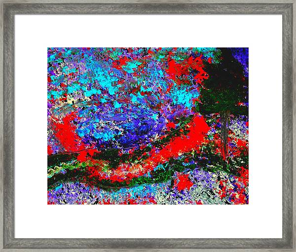 Into The Forest Of Midnight Framed Print