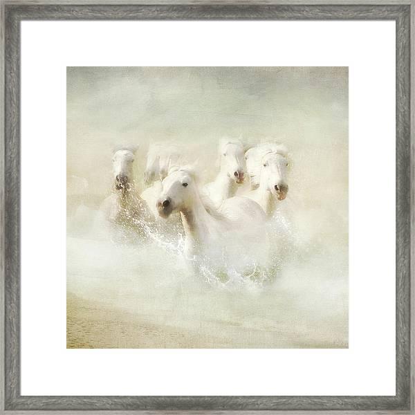 Into The Mist Framed Print