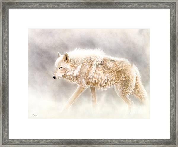 Into The Mist Framed Print