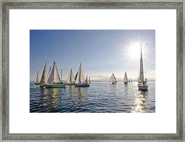 Into The Sun Framed Print by Tom Dowd