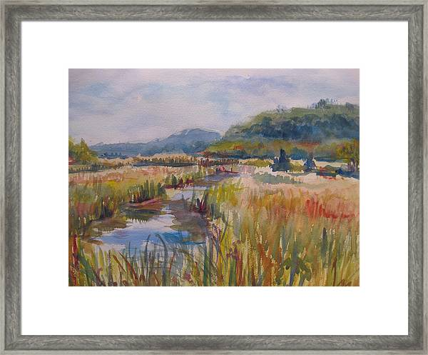 Iona Island October Framed Print by Joyce Kanyuk