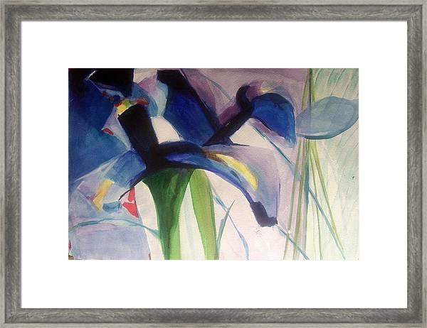 Iris  Power Framed Print